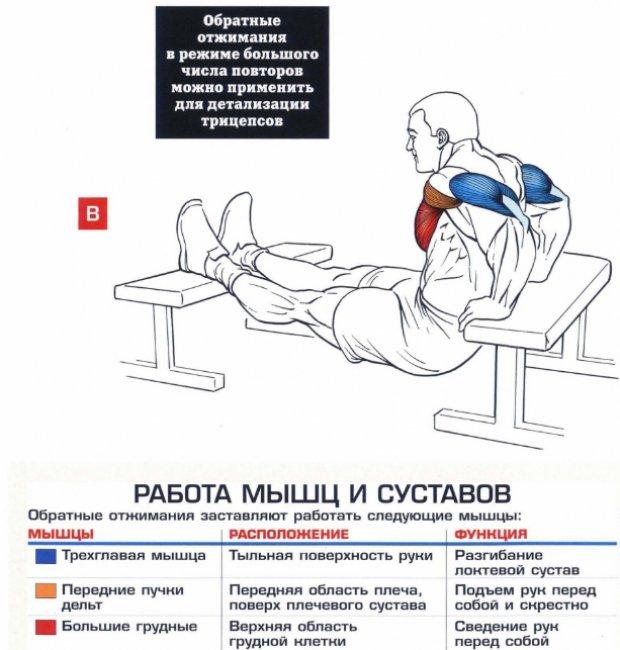 derékfájást okoz az acromioclavicularis ízületi kezelés osteoarthrosis