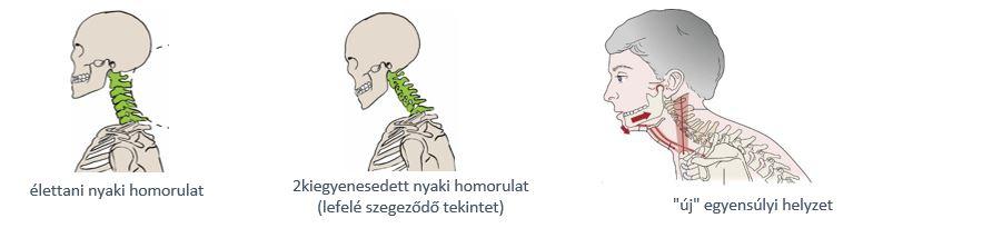 Temporomandibuláris terápia