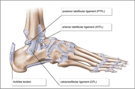 a csípőízület artrózisának tornakezelése térdfájdalom éjjel okoz