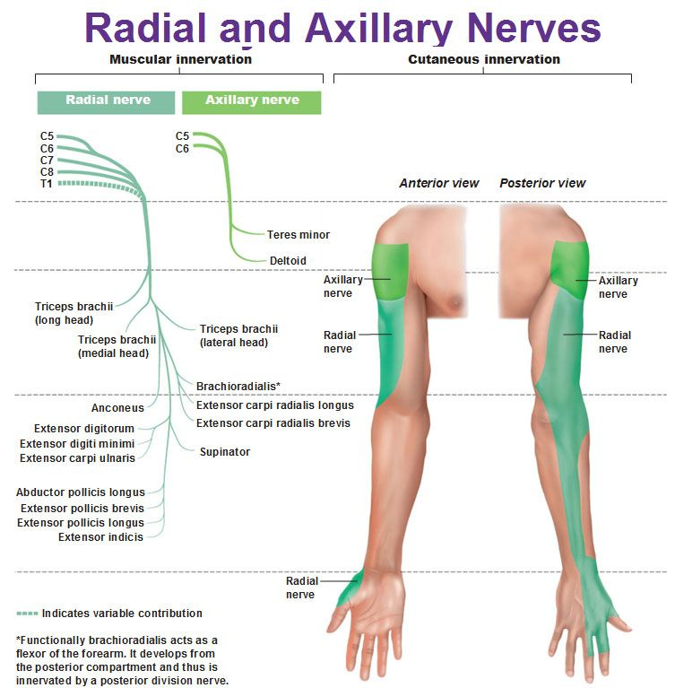 a brachialis artrózis kezelése