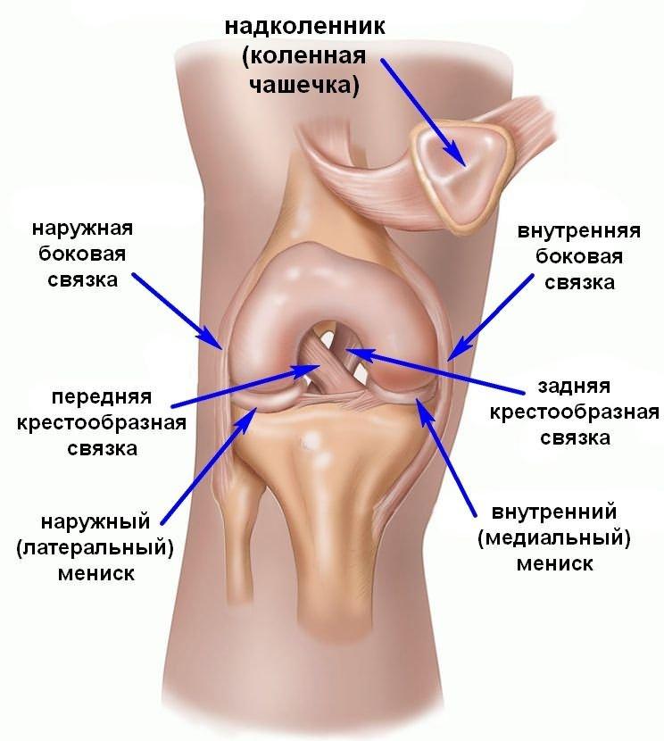 mi okozza a térd artrózisát