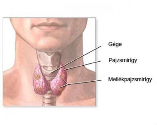 az eutirox ízületi fájdalma)
