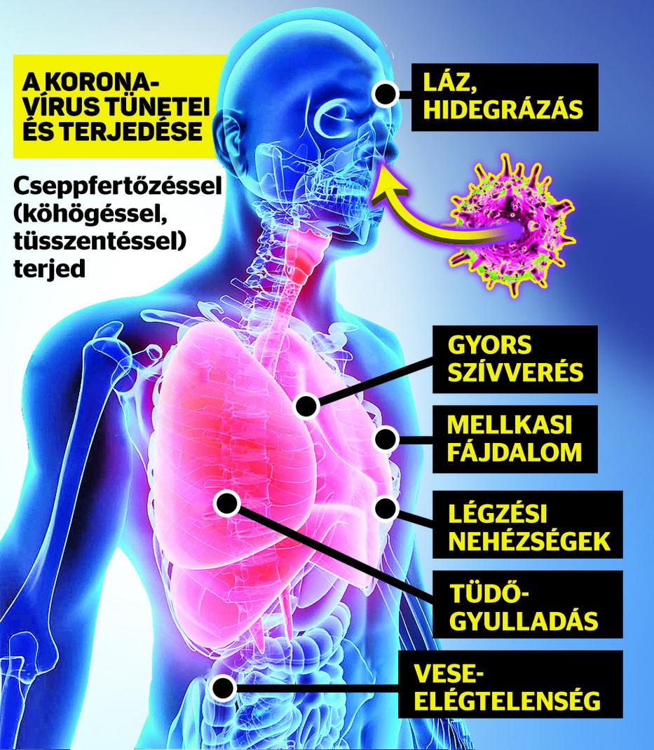 helmintikus inváziók és ízületi fájdalmak)