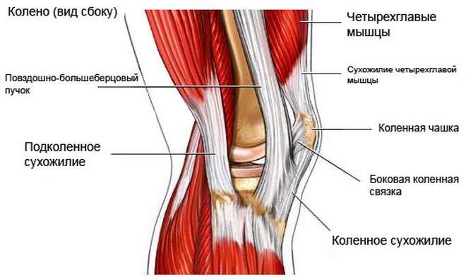 térdízületi ligamentum törése és kezelése