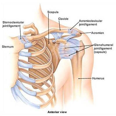 vállízület ligamentum kezelése