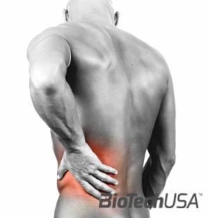 testépítők számára ízületi fájdalmak esetén)