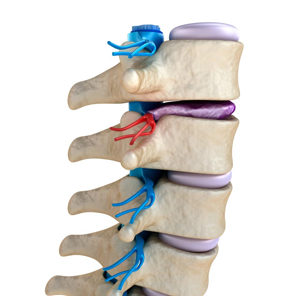 ízületi fájdalom neurológus