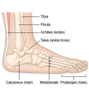 hogyan kell kezelni a lábak ízületeit a boka