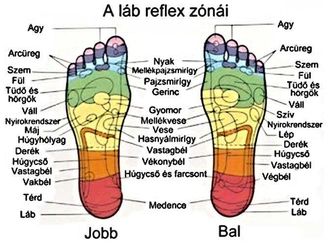fájdalom a bal láb medenceízületében gyógyszer ízületi fájdalmakhoz, hőmérsékleten