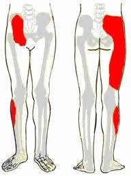 lábfájdalmak és ízületek kezelése