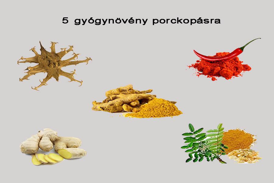 legjobb gyógynövények az ízületi kezeléshez)
