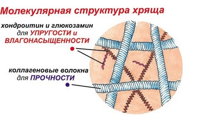 térdfájdalom és hajhullás együttes kezelés leninsky prospekt