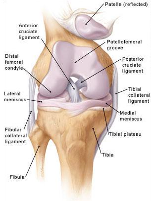 térdízületi sérülések és azok