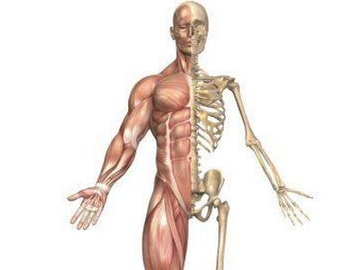Dr. Diag - Anaerob baktériumok okozta pyogén arthritis
