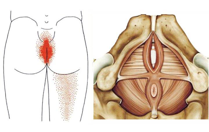 tartós fájdalom az alsó hátán és az ízületekben)