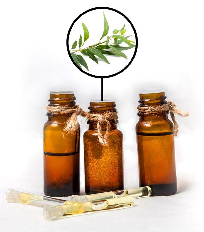 eukaliptusz az ízületek kezelésében)