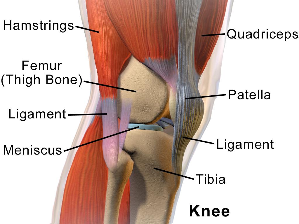 a térd kenőcsének arthroso-arthritis