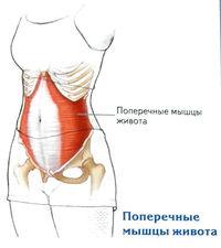 A térdízületi chondromalacia fokozatai: diagnózis és kezelés - Talpbetét