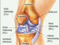 kenőcs a kar ízületi fájdalmairól fájdalom a csípő területén