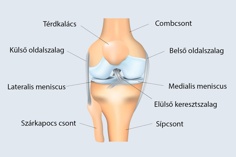 a térdízületek kezelése sérülések után