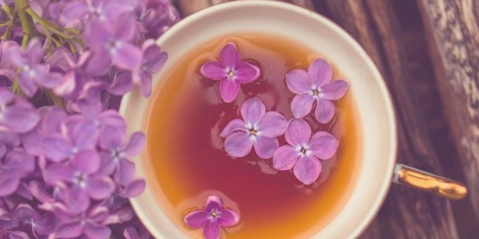 vazodilatáló készítmények méhnyakcsonti osteochondrozishoz)