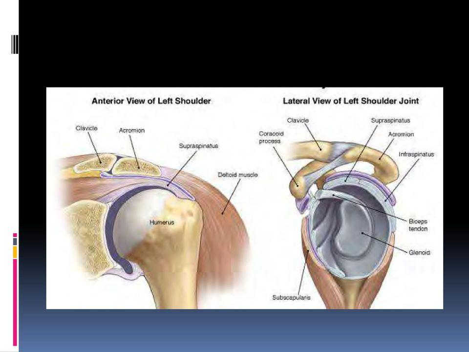 a térd fekvő betegség artrózisának kezelése lábujjak artrózisos kezelése