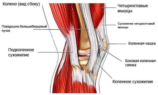 a térd hatékony deformáló artrózisa)