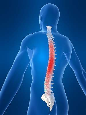 Lapocka tájéki hátfájás - Mitől lehet? - A szakértő válaszol
