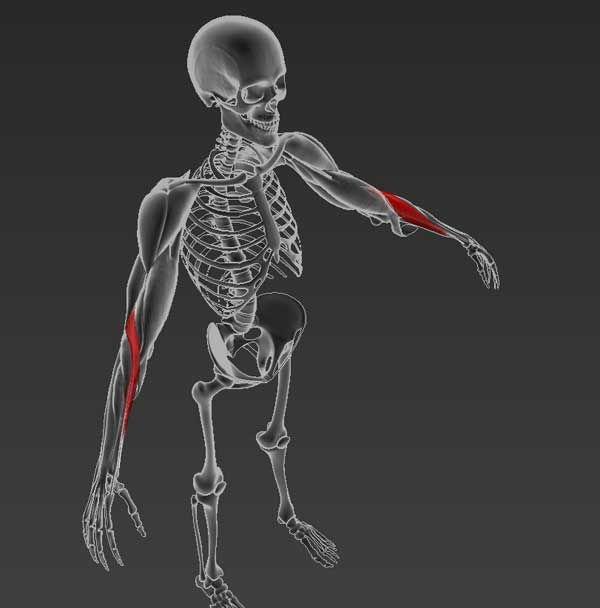 vállízület diszlokációs fájdalom a karok felemelésekor)