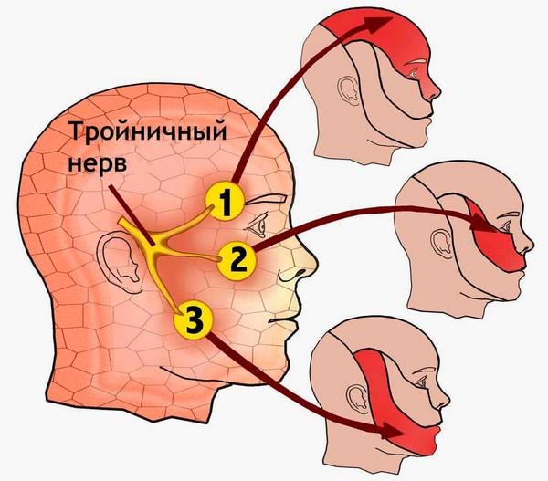csípőidegek kezelése fájdalom a csípő- és térdízületben