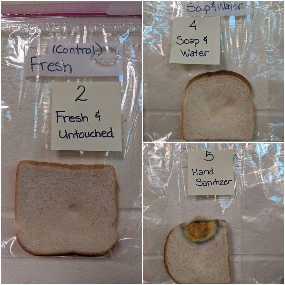 hogyan kezeljük az ízületeket kenyérrel)