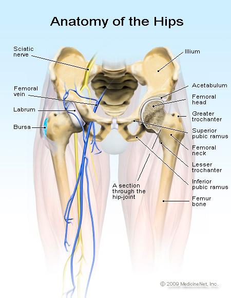 csípőfájdalom nőkben