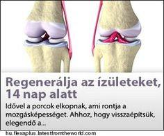 az ízületek osteoarthritis kezelése fóliával
