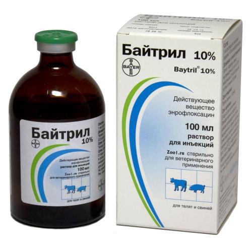 bicillin együttes kezelés során
