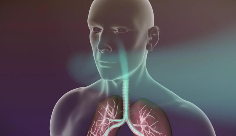 Mi veszélyes és hogyan kezeljük a nyaki diszlokációt? - Kár