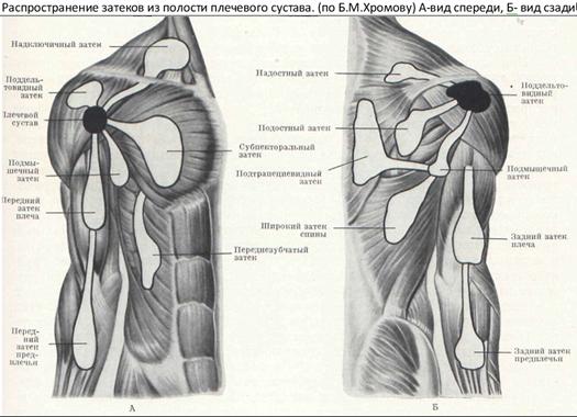 Köldökcsont-artrózis - a nyaki gerinc degeneratív patológiája