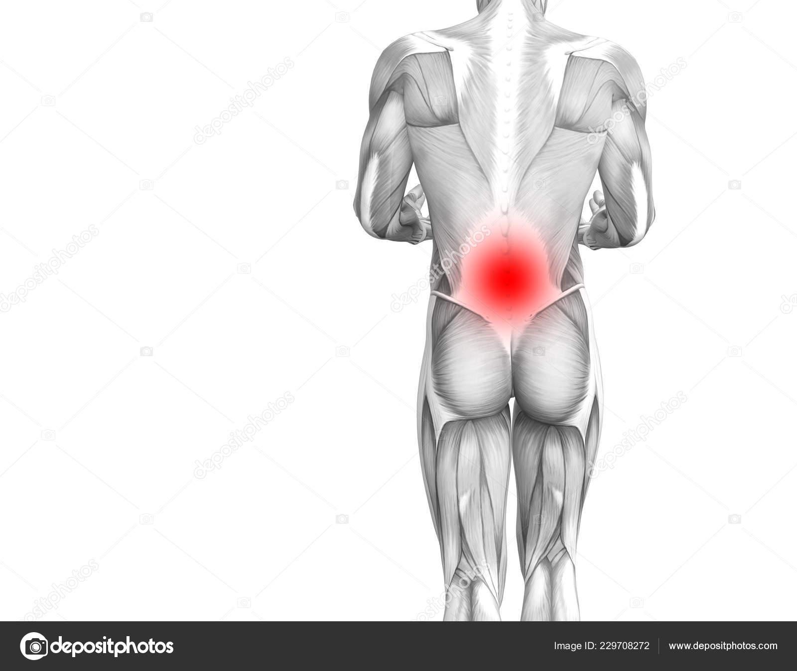 csontritkulás kezelése csípőgyógyszer megnyomja az ízületi fájdalmakat