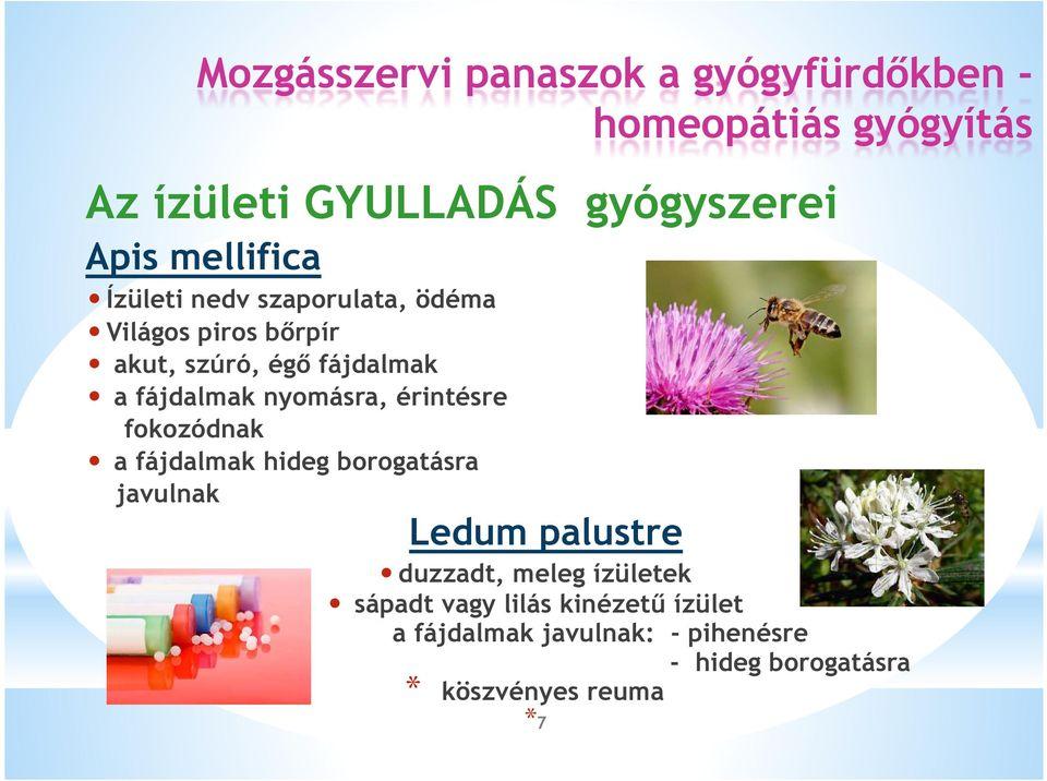 Ízületi betegségek kezelése homeopátiás szerekkel