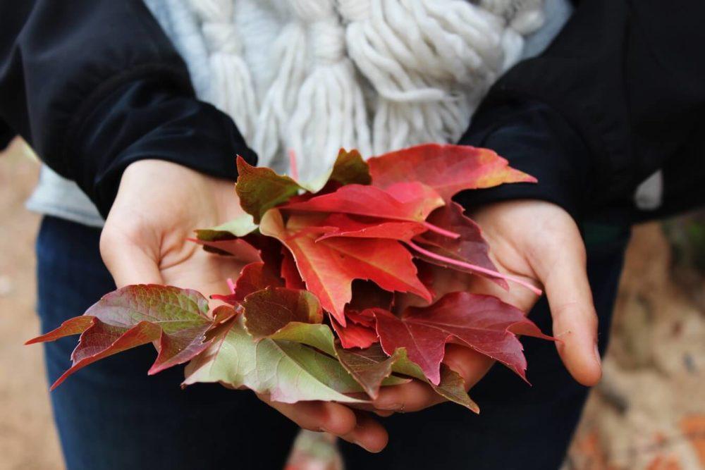 Ízületi fájdalom ősszel felerősödhet