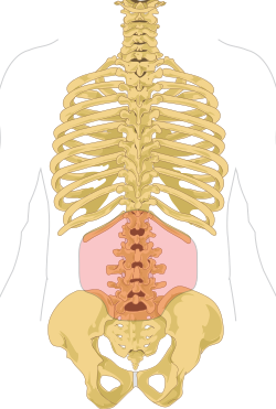 égő fájdalom a gerincben
