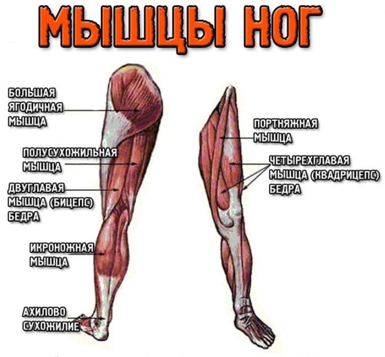 ha a lábak fájnak az ízületekben