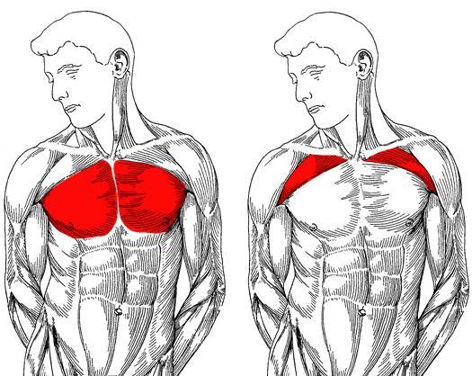 Ezt tedd, ha fáj a sportolás | Well&fit