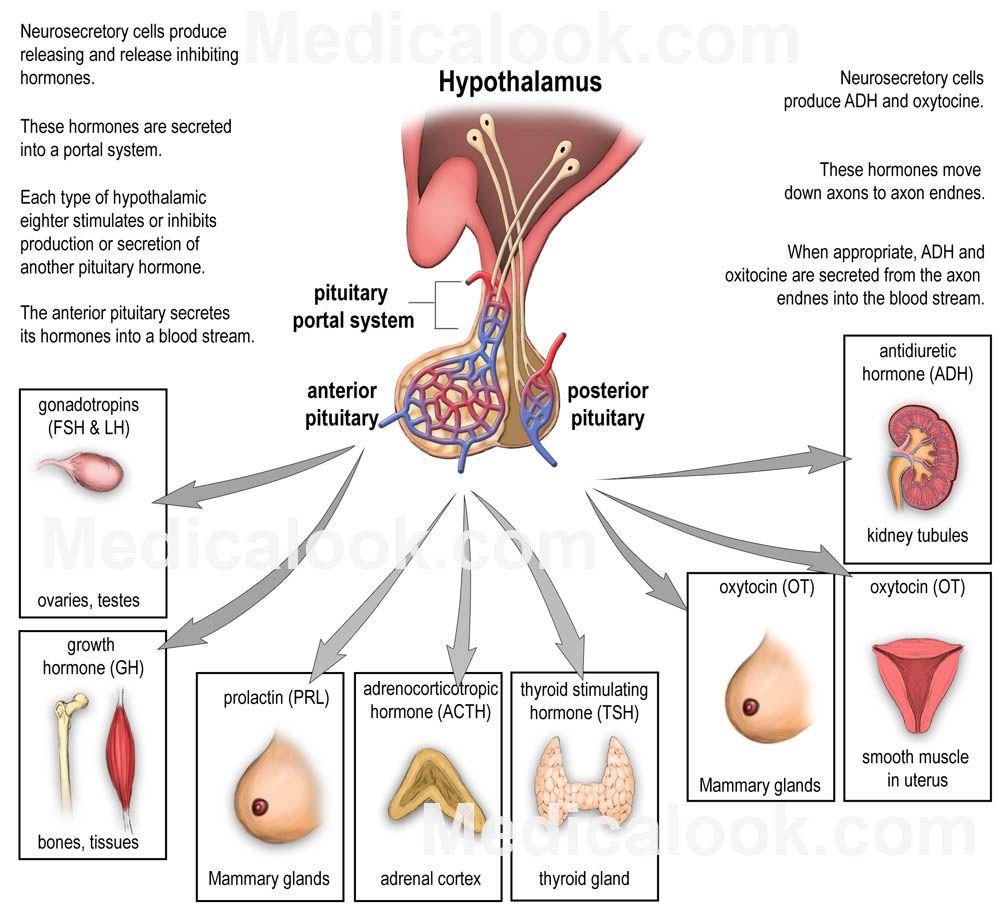 a térdízület kenőcsének artritisz ízületi fájdalom depresszió