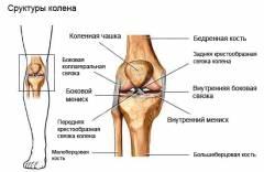 a térdízület kezelésének törött meniszkusza)