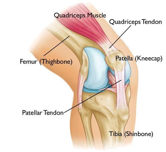 térdfájdalom ligamentum károsodása