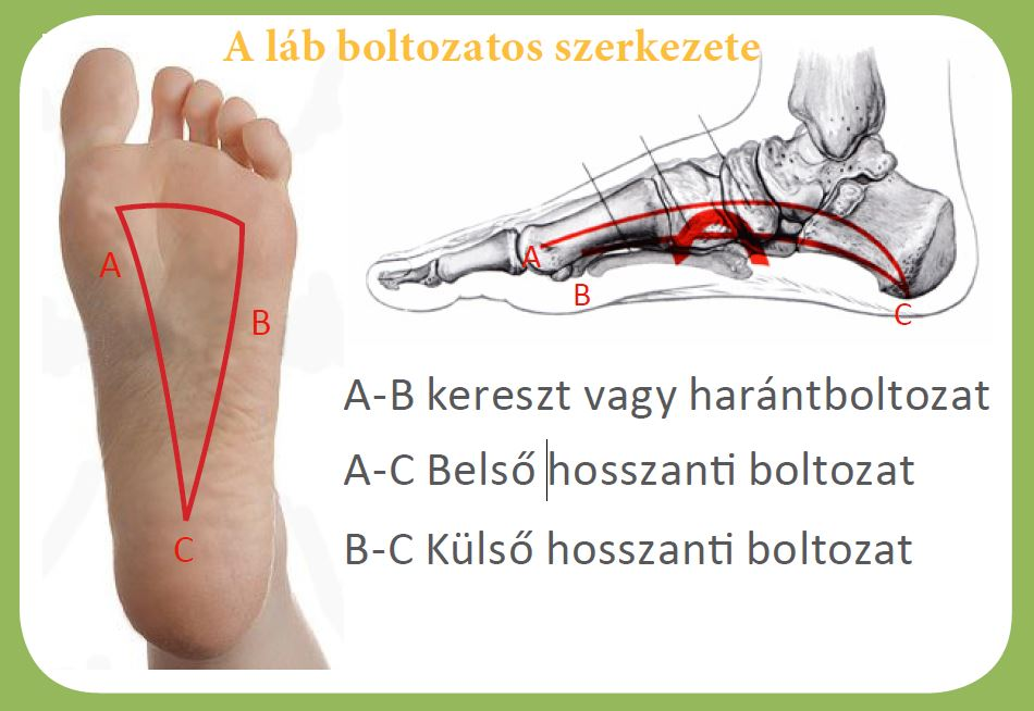 a nagy lábujj ízülete folyamatosan fáj