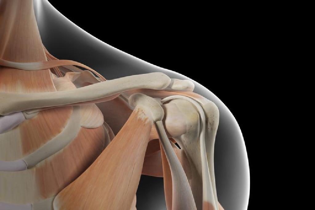 emberi vállízület kezelése fájdalom a jobb csípőízület