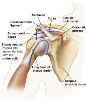 váll ligamentum-töréskezelés