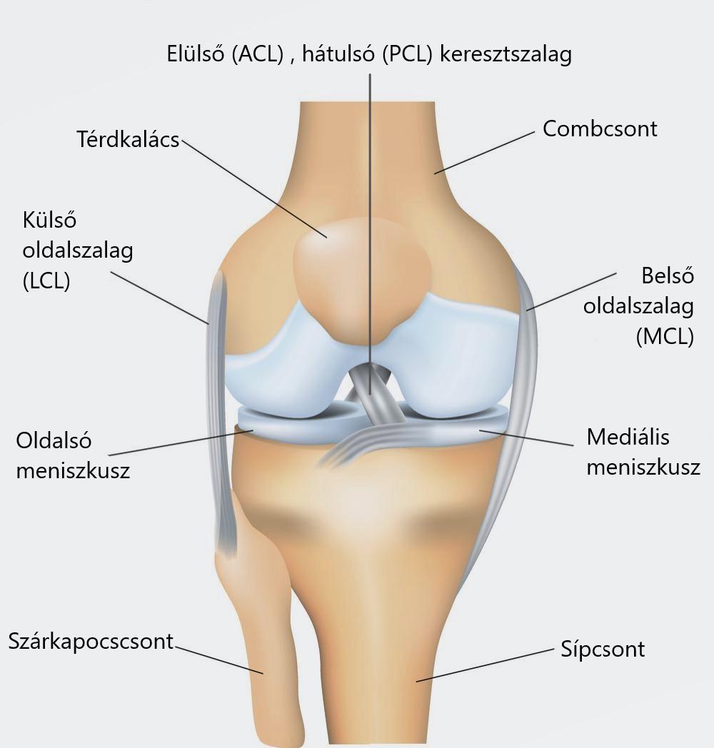 oldalsó térdfájdalom járás közben