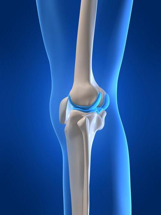A térdízület meniszkuszának törése. Pocleválás, térdfájdalom, meniszkusz sérülés kezelése